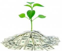 Seed Funding Seed Funding:  How to get those first critical dollars in the Door